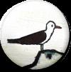 Magnetbutton Möwe